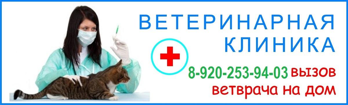 Архангельская областная клиническая больница схема