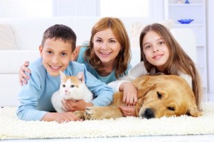 veterinary care at home